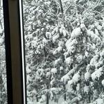 23435025 - 2Fカフェテラス席の窓から