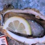 越前がに やまに水産 - 店頭で販売していた 生牡蠣