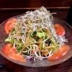 23447654 - ジャコと新鮮野菜の健康サラダ(480円)。ジャコは揚げたものではありません。このボリュームでこの価格はCP高いです。ドレッシングかけすぎな気がしますが(汗)。