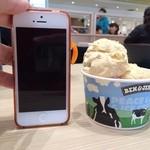 23611095 - iPhone5と高さ比較