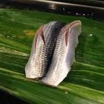 SUSHI-DINING 魚浜 - 小肌