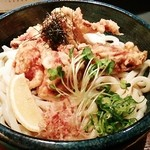 麺工房北の - 鶏天麩羅ぶっかけうどん♪980円