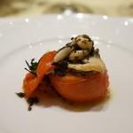 リベロ - トマトと貝の前菜