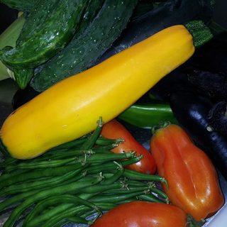 旬な野菜をご堪能下さいませ!