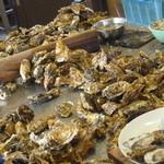 中山牡蠣養殖所 - ごろんごろん♪ これは壮観っ!