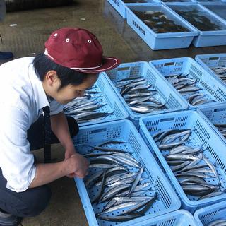 渥美魚市場直送鮮魚がおすすめ!
