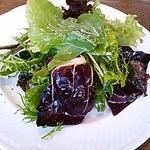 23816110 - 朝摘み野菜のグリーンサラダ