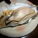 23867592 - 牡蠣オープン♪(個体差が有ります)