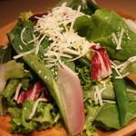 SoleiL - 東京野菜の本日サラダ