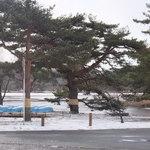 栞 - お店の向かいは南湖公園