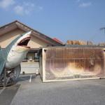 23947352 - まずはお店の目印。 でっかいサメに、壱億円札! なんじゃこれ(笑)