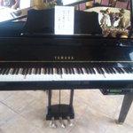 ぶどうの実 - 2009/10 3Fにある自動演奏のピアノ