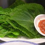 キョロちゃん - チシャとゴマの葉