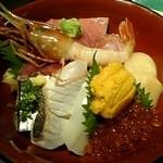 築地青空三代目 hafu - 特上海鮮丼