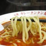 元祖カレータンタン麺 征虎 総本店 - 丸山製麺の太麺