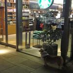 スターバックスコーヒー - ご主人を待つワンちゃん