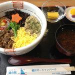 道の駅 鴨川オーシャンパーク - 道の駅のおらが丼「牛魚丼」(ぎゅうととどん)