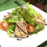 スペイン料理 ティオ・ダンジョウ - サラダもたっぷりのパテドカンパーニュです。