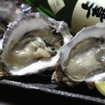 JAPANESE  DINING 無花果 - 厚岸直送牡蠣と仙鳳趾フェアー開催中です。      寒い時期の身がしまったプリプリの牡蠣を、生・蒸し・焼き・フライ・天ぷらなど色々な食べ方でご賞味ください。