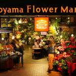青山フラワーマーケット ティーハウス - パッと見は普通のお花屋さん!