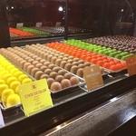 リナルディーニ - チョコカラー8種です