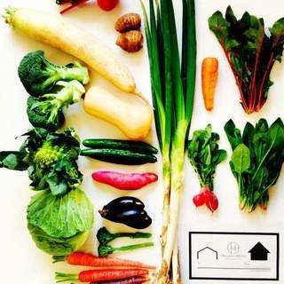 新鮮野菜を毎日お届け!