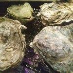 24319646 - 焼き牡蠣1,850円(5個)