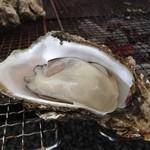 かき小屋 渡波 - 2015年の牡蠣は身入りがとても良いです!
