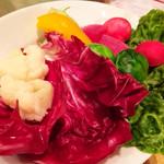 イル メルカート アンジェロ - ピエモンテ名物冬野菜のガーリックフォンデュ バーニャカウダ