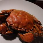 安晏 - 【2013.12】 上海蟹②