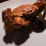 安晏 - 【2013.12】 上海蟹④