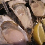 魚Den - 北海道の生牡蠣。クリーミ~♪