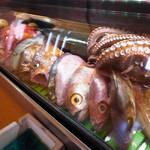 源助 - 料理写真:源助こだわり魚津港朝獲れの魚をご堪能ください。