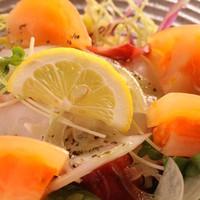 酒飯場 さかもと - プリプリのタコとお野菜でさっぱりタコサラ◎