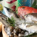 秋葉原漁港 快海 - 毎日築地で仕入れる鮮度抜群の魚を堪能ください!