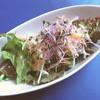 マンジャーレ - 料理写真:サラダ