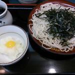 24626959 - 冷やしおろし(大盛り) 390円(360+30円)