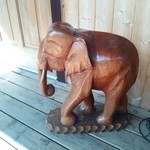 24632616 - 店先の木彫りの象