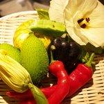 炭の花 - 契約農家より届く有機野菜 あまり市場に出回らない珍しい野菜もあります!