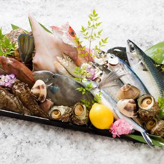 旬の魚をお刺身や一品料理でご賞味下さい。