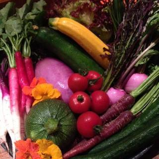 旬の野菜はもちろん.....鮮度抜群の鎌倉野菜もご提供☪