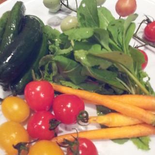 産地や鮮度にとことんこだわった有機野菜を仕入れております。素材の味をお楽しみ下さい。