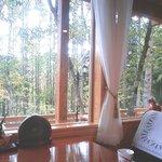 癒しの窓 - 窓からの眺め
