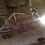 グルペット - 天井に自転車が・・・。