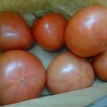 道の駅 みつ - トマト