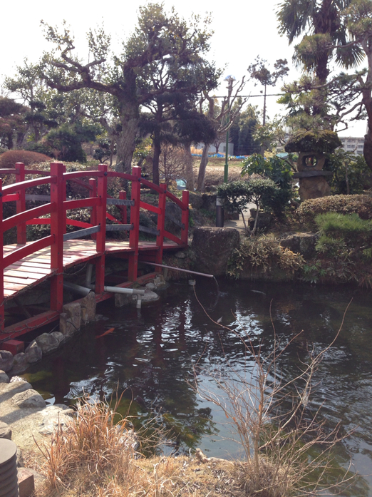 癒しの宿 七沢荘
