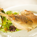 ドクトルカルネ - フランス産鴨肉のコンフィ マニゲットの香り 1,600円