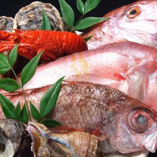 【その日に仕入れた自慢の新鮮魚介類がいっぱい!!】
