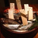 2483952 - 新鮮なお魚を手桶に入れて席まで店員さんが持ってきてくれます。