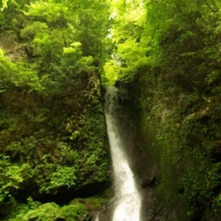 鹿児島産高牧の森の天然水